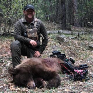 Black-bear-02